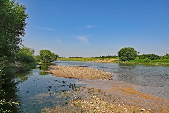 La Loire en aval de Riou Rév 2018 Blog